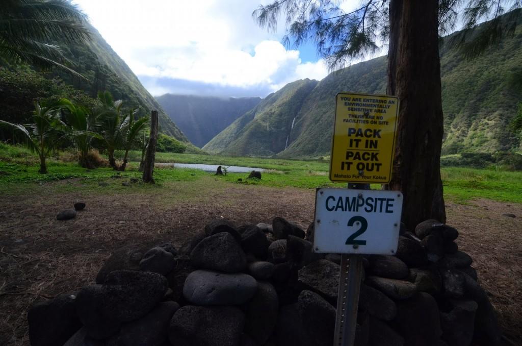 Waimanu Valley Campsite